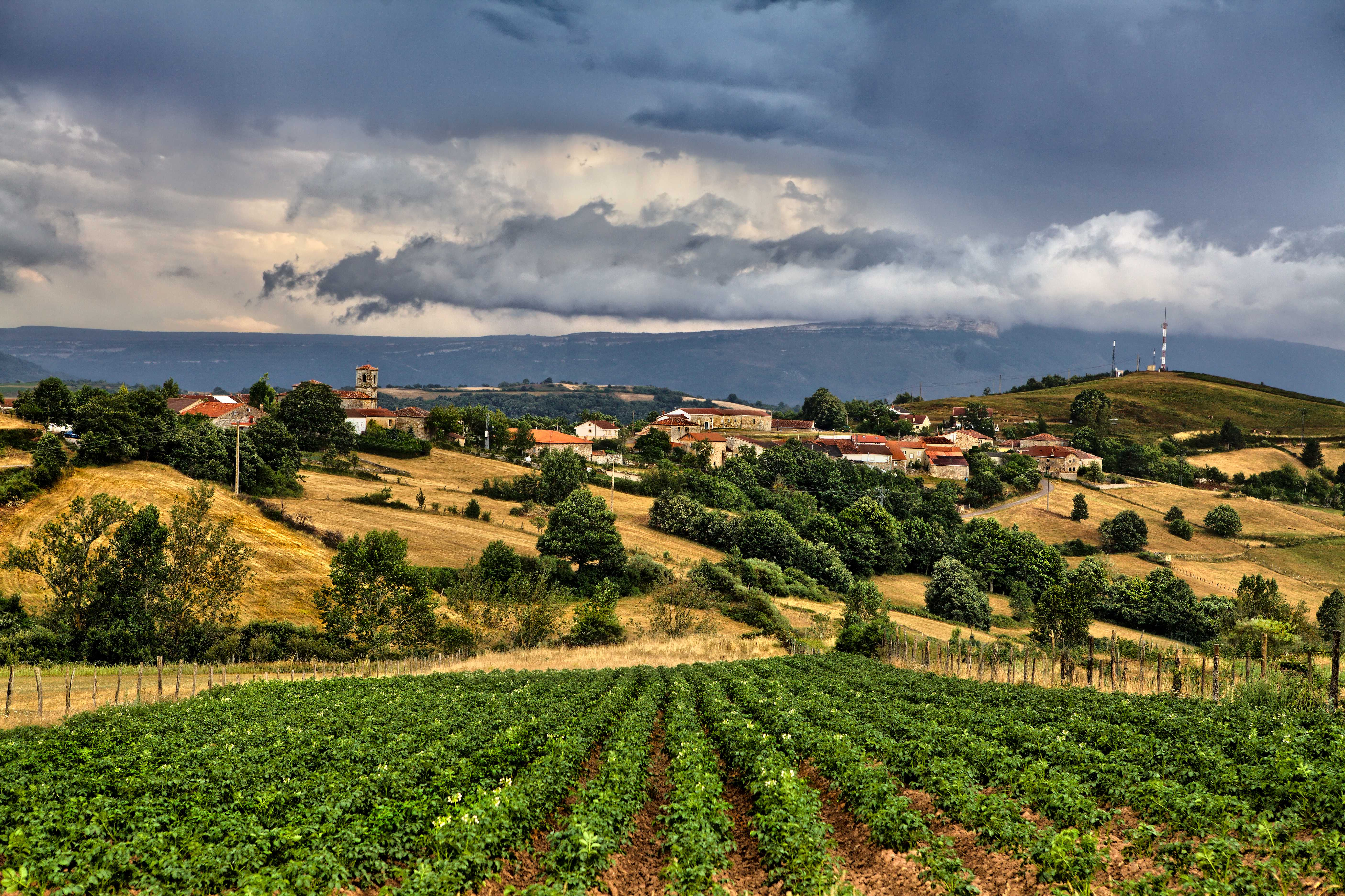 Cultivo de la patata en valderredible inventario dieta mediterranea - La mediterranea ...